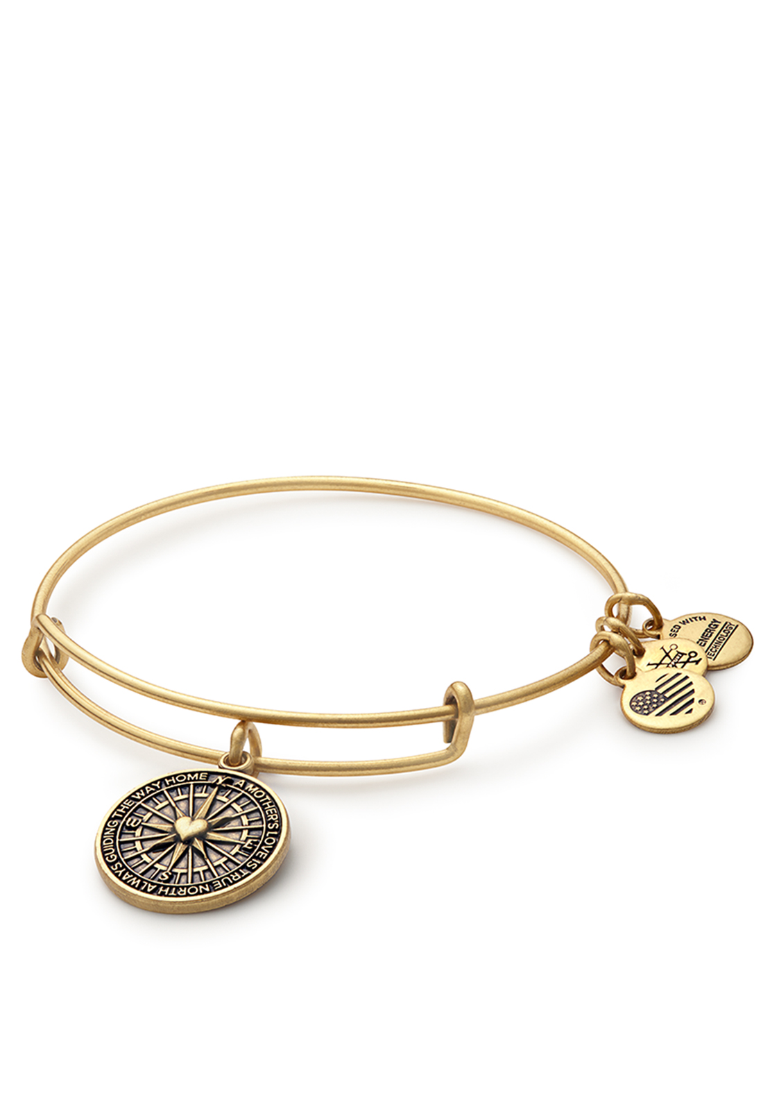 Alex and Ani True Direction Bangle Gold