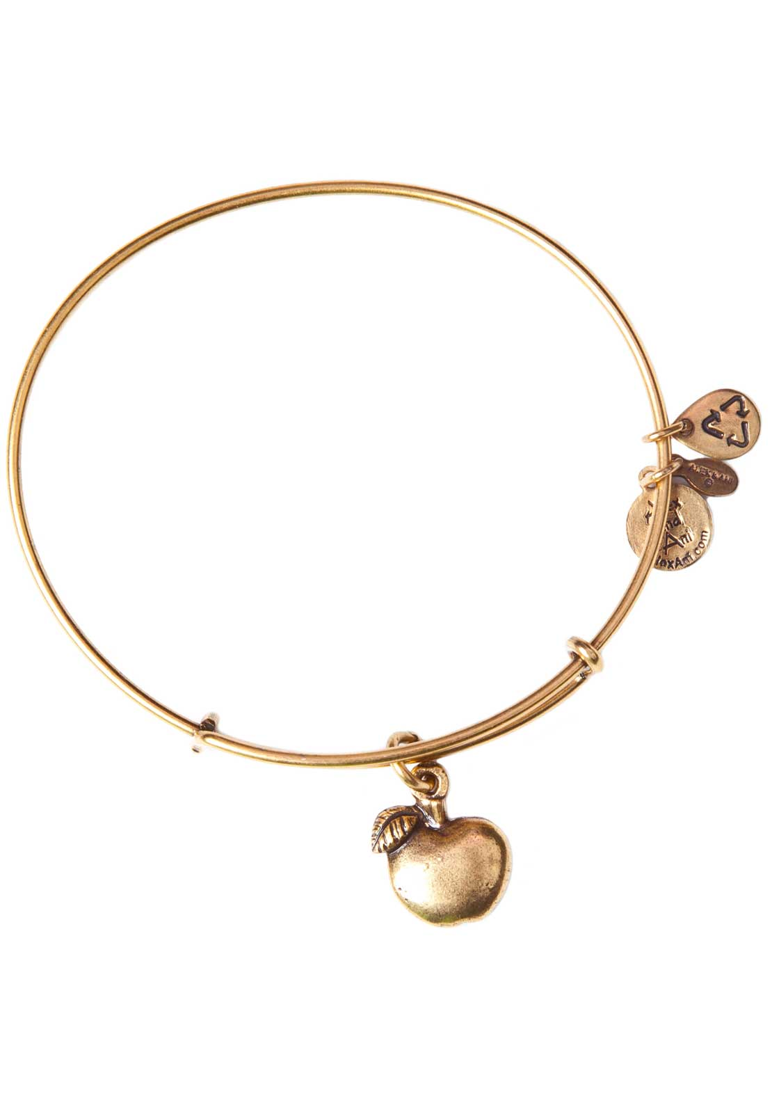 Alex and Ani (+) Energy Apple of Abundance Bracelet, Gold