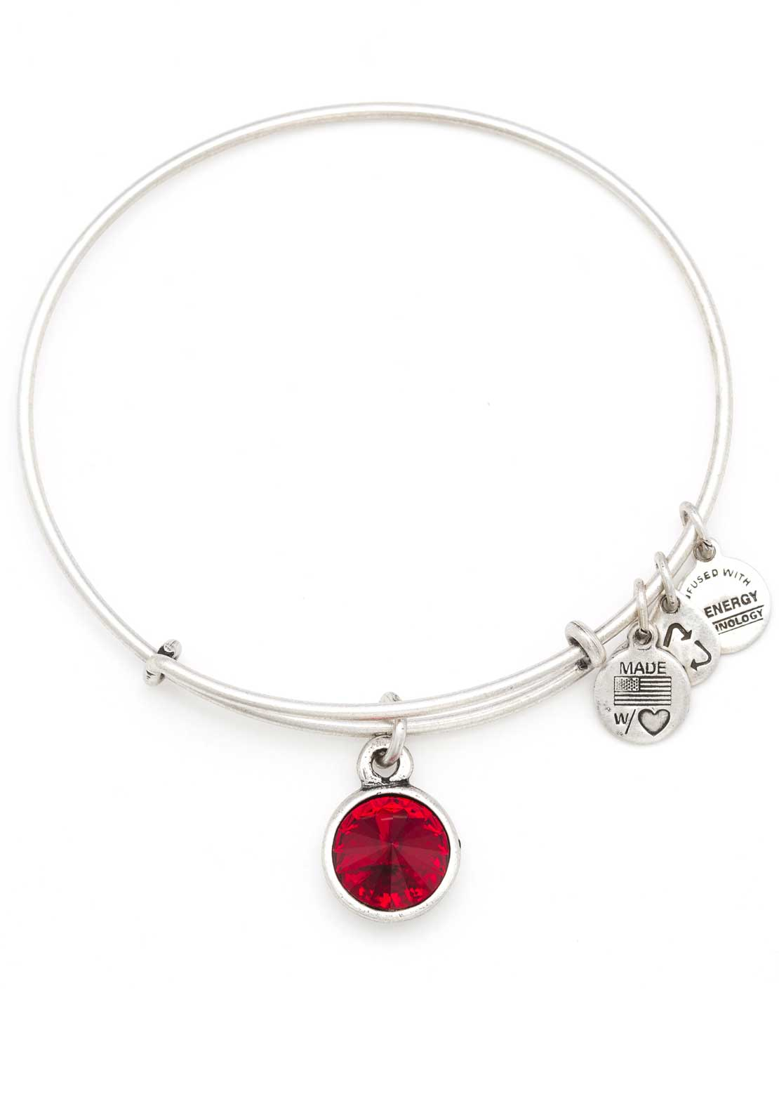 Alex and Ani (+) Energy January Birthstone Garnet Bracelet, Silver