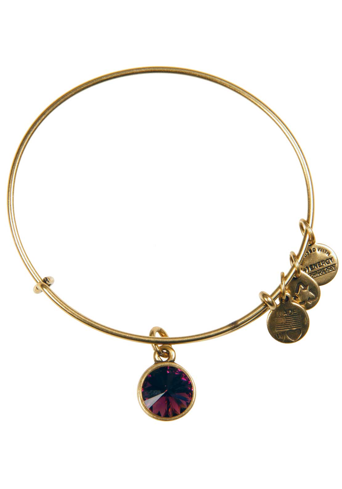 Alex and Ani (+) Energy February Birthstone Amethyst Bracelet, Gold