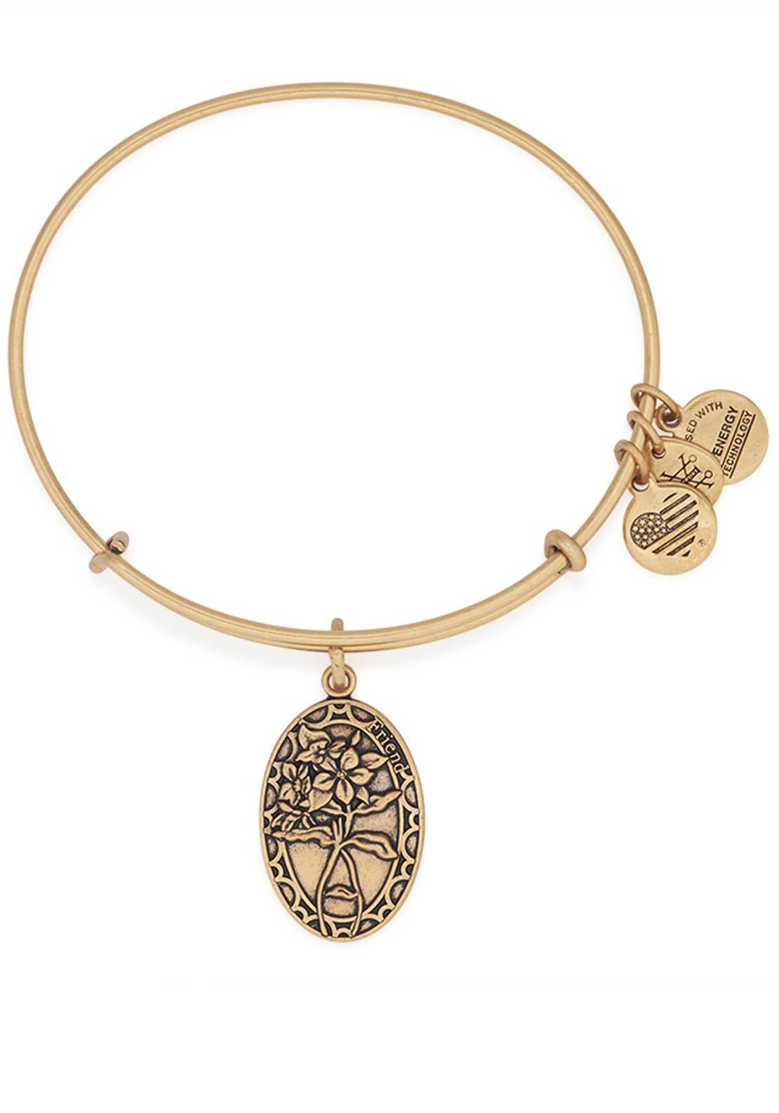 Alex and Ani Because I love you Friend Periwinkle Bracelet, Gold