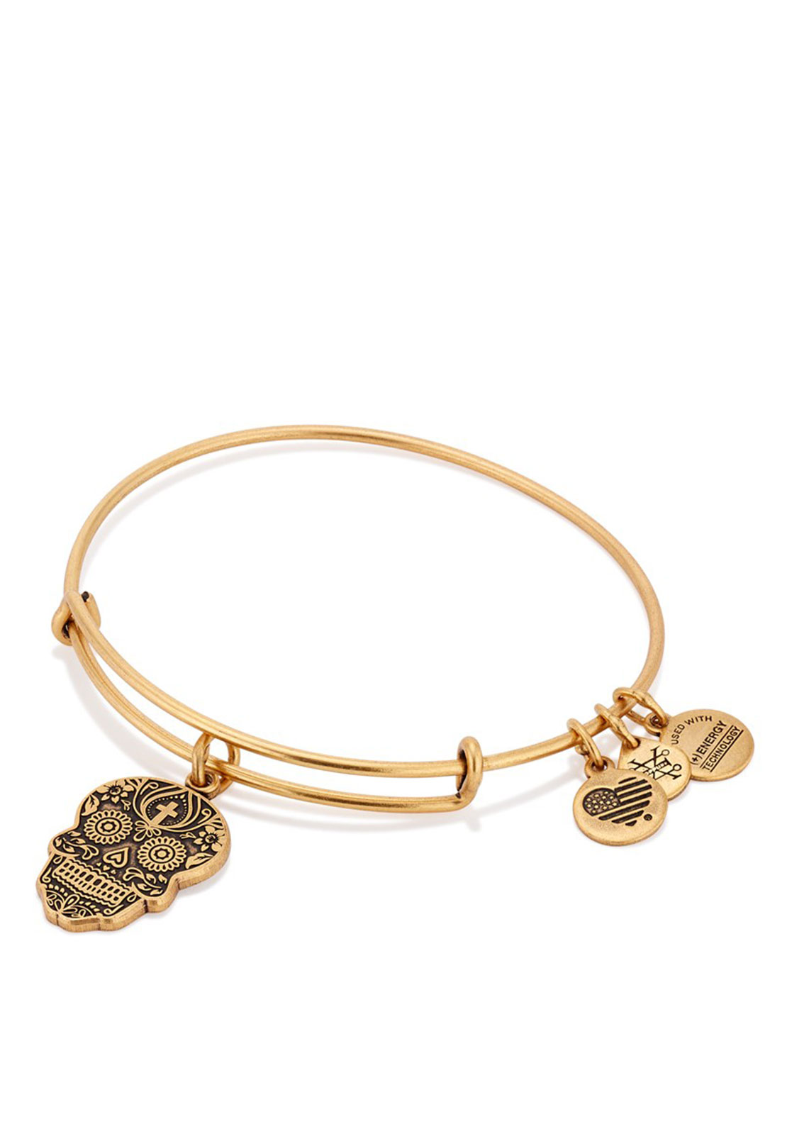 Alex and Ani Calvaera charm Bracelet, Gold Plated