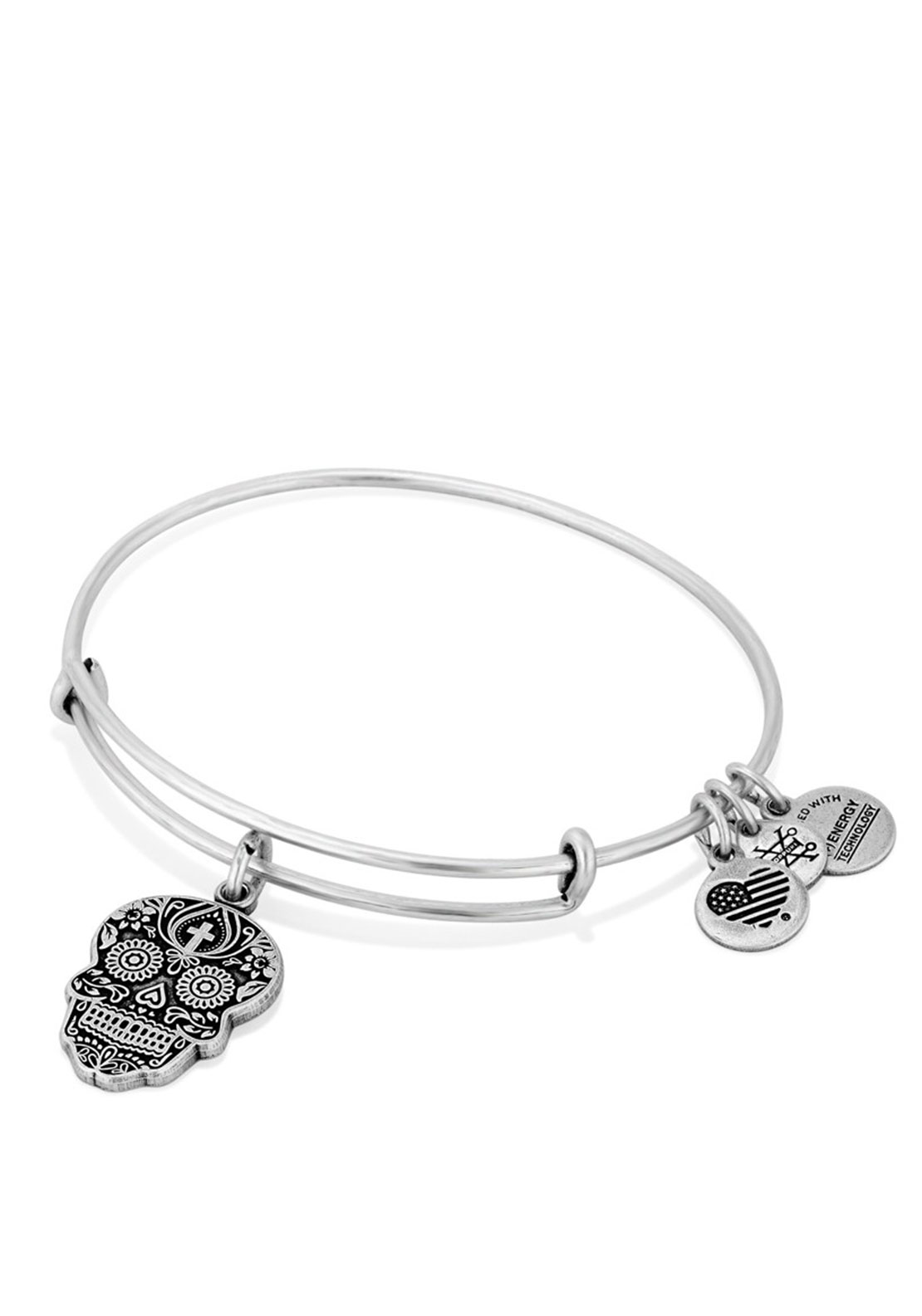 Alex and Ani Calavera Charm Bangle, Silver