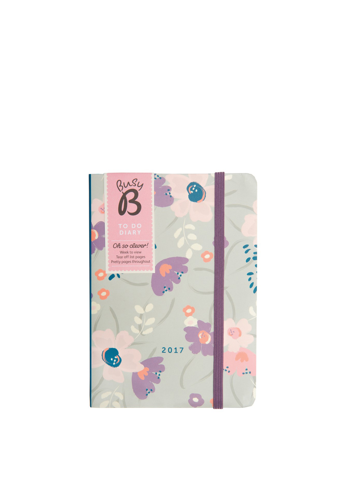 Busy B To Do Diary 2017