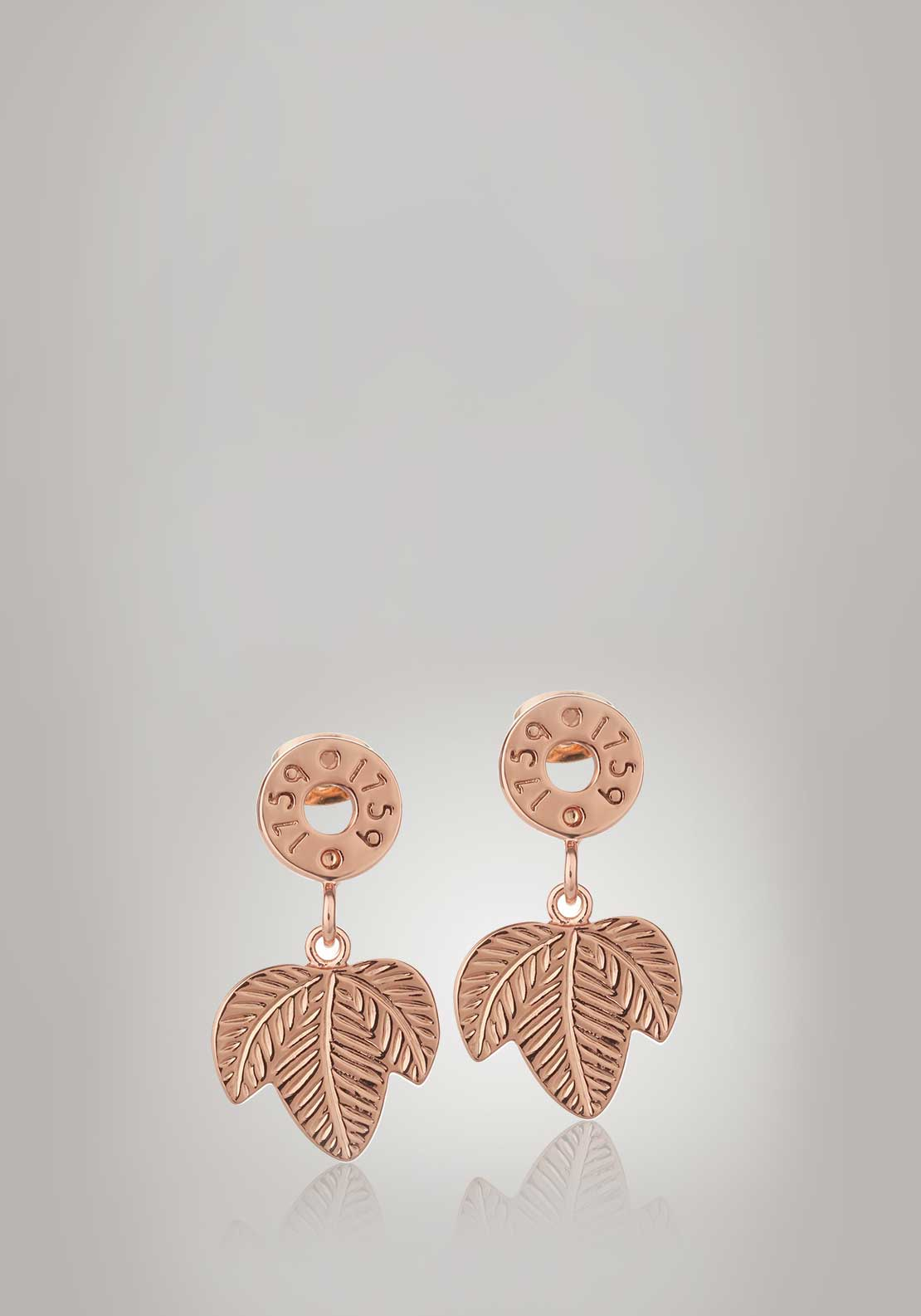 Newbridge Silverware Guinness Leaf Earrings, Rose Gold