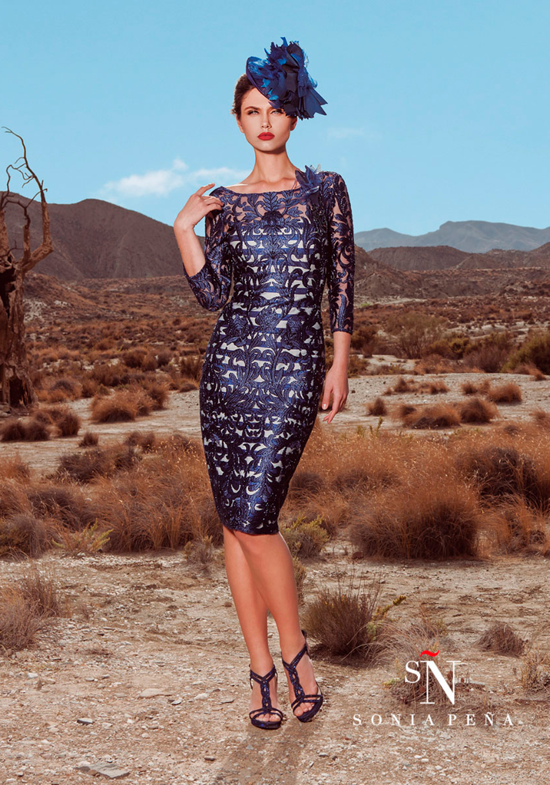 Sonia Pena Embroidered Overlay Pencil Dress, Navy