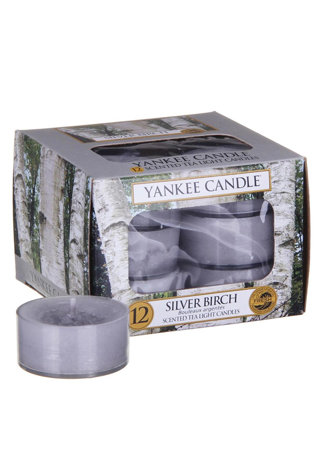 Yankee Candle 12 Scented Tea Light Candles, Silver Birch