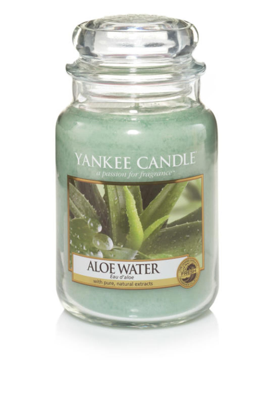 Yankee Candle Large Classic Jar, Aloe Water