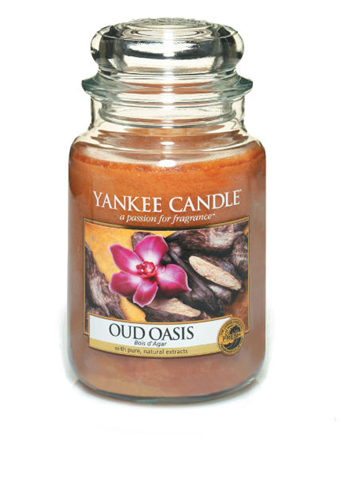 Yankee Candle Large Classic Jar, Oud Oasis