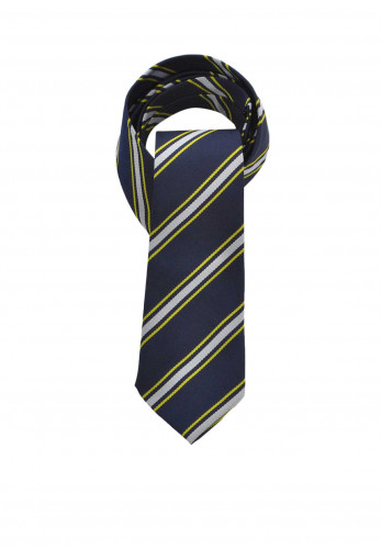 Hunter Navy Yellow and Silver Stripe School Tie