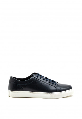 Paul O Donnell Louis Trainer, Navy