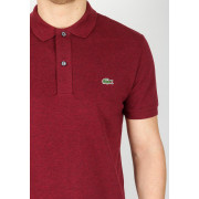 burgundy lacoste polo